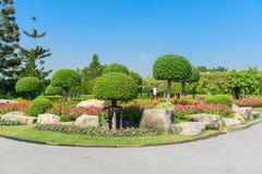 Giardinaggio ed abbellire Fotografia Stock