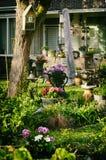 Giardinaggio ed abbellire Fotografie Stock Libere da Diritti