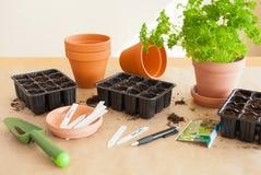 Giardinaggio, piantando a casa semi della semina in scatola di germinazione fotografie stock libere da diritti