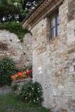 Giardinaggio semplice in Italia, gerani e capperi Fotografie Stock Libere da Diritti
