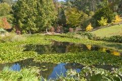 Giardini botanici alti del supporto, Australia Meridionale Fotografia Stock