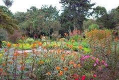 Giardini botanici, Bogota Fotografia Stock