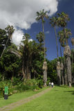 Giardini botanici a Caracas Fotografia Stock Libera da Diritti