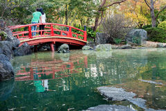 Giardini botanici castani dorati, giapponesi Zen Gardens Section Immagine Stock