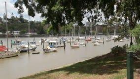 Giardini botanici 1 di Brisbane video d archivio