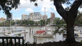 Giardini botanici 3 di Brisbane video d archivio