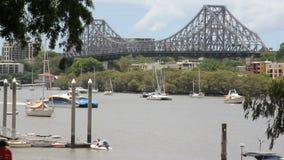 Giardini botanici 5 di Brisbane video d archivio