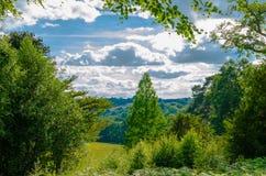 Giardini botanici e legno scenici sotto le nuvole luminose di estate Immagini Stock