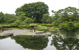 Giardini botanici nel Giappone Immagine Stock