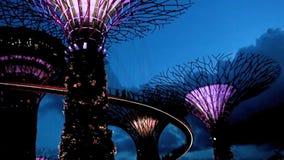 Giardini dalla baia alla notte archivi video