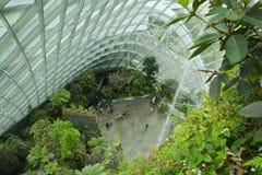 Giardini dalla baia, Singapore Immagine Stock Libera da Diritti