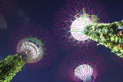 Giardini dalla baia, Singapore immagine stock