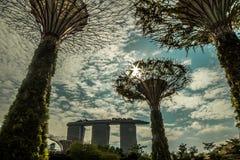 Giardini dalla baia, Singapore Fotografia Stock Libera da Diritti