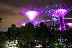 Giardini dalla baia a Singapore alla notte Fotografie Stock