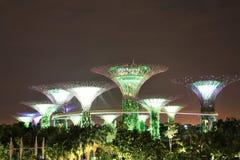 Giardini dalla baia a Singapore alla notte Immagine Stock Libera da Diritti