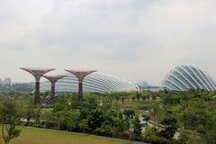 Giardini dalla baia, una parte integrante di strategia dal governo di Singapore per trasformare Singapore da città giardino a cor fotografia stock libera da diritti