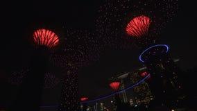 Giardini dalla manifestazione di notte della baia stock footage