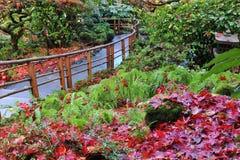 Giardini del butchart di autunno Immagini Stock