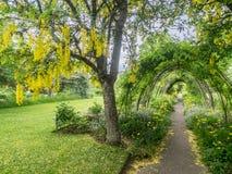 Giardini del castello di Cawdor Immagini Stock
