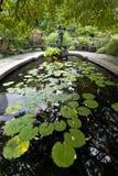 Giardini del conservatorio del Central Park Fotografia Stock Libera da Diritti