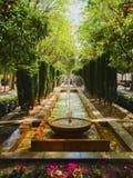 Giardini del palazzo di Almudaina in Palma di Maiorca Immagine Stock