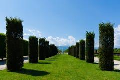 Giardini del palazzo di Venaria, Torino fotografia stock libera da diritti