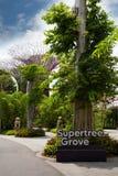 Giardini del parco dalla baia a Singapore Fotografia Stock Libera da Diritti