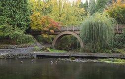 Giardini del rododendro a Portland, Oregon Fotografia Stock Libera da Diritti