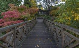Giardini del rododendro a Portland, Oregon Fotografia Stock