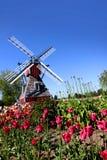 Giardini del tulipano fotografie stock libere da diritti