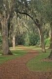 Giardini della torretta di Bok, lago Galles, Florida Fotografie Stock Libere da Diritti
