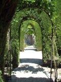 Giardini di Alhambra Fotografie Stock Libere da Diritti