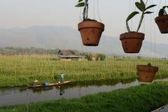 GIARDINI DI GALLEGGIAMENTO DELL'ASIA MYANMAR NYAUNGSHWE Fotografia Stock