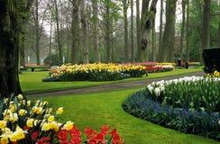 Giardini di Keukenhof Fotografie Stock Libere da Diritti