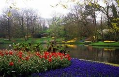 Giardini di Keukenhof Immagini Stock Libere da Diritti