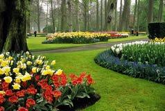 Giardini di Keukenhof Fotografia Stock Libera da Diritti