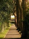 Giardini di legno della chiesa della st Johnes Fotografia Stock