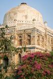 Giardini di Lodi, Nuova Delhi Fotografia Stock Libera da Diritti