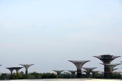 Giardini di Singapore dal giro della baia immagini stock libere da diritti