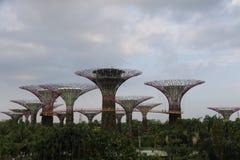 Giardini di Singapore dalla baia Fotografie Stock Libere da Diritti