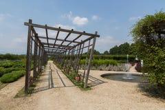 Giardini di Venaria Reale, Torino fotografie stock