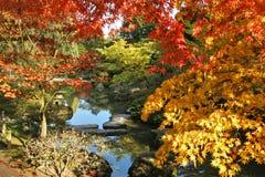 Giardini giapponesi Immagine Stock Libera da Diritti