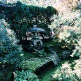 Giardini giapponesi ai giardini botanici di Chicago Fotografie Stock