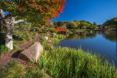 Giardini giapponesi in autunno Fotografia Stock