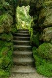 Giardini giapponesi in Powerscourt, Irlanda Immagini Stock Libere da Diritti