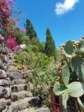 Giardini Mediterranei PeterDenovo di Filicudi Fotografia Stock