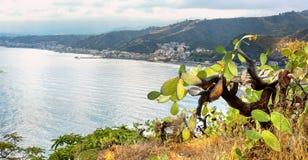 Giardini Naxos från Taormina, landskap av Messina italy sicily arkivfoto
