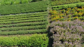 Giardini nella campagna