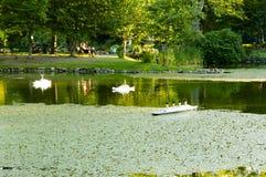 Giardini pubblici di Halifax - Nova Scotia fotografia stock libera da diritti