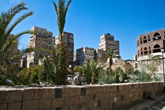 Giardini a Sanaa, Yemen. Immagine Stock Libera da Diritti
